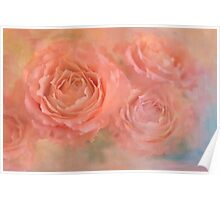 rose confection Poster
