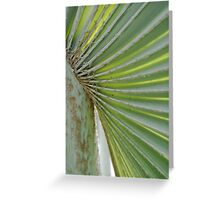 Turks and Caicos Palm Greeting Card