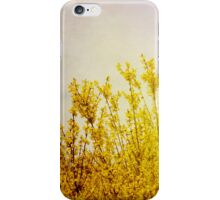 Sun Kissed Yellow Flowers iPhone Case/Skin