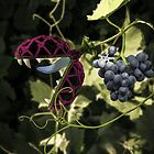 Don't Touch the Grapes by Randy Turnbow