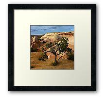 Escalante Tree Framed Print
