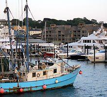 Newport Harbor by reendan