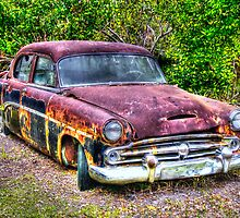 Dodge dying slowly on The Everglades in Florida by Jeremy Lavender Photography