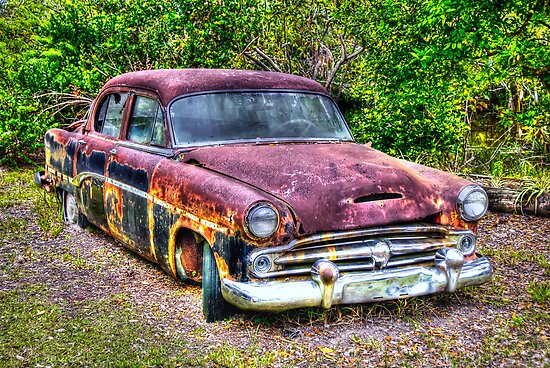 Dodge dying slowly on The Everglades in Florida by 242Digital