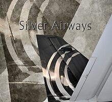 Silver Airways Tail Logo by Diane E. Berry