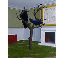 Huginn and Muninn (Thought and Memory), 2012, Oil on Linen, 91X76cm. Photographic Print