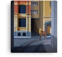 The Messenger II, 2013, Oil on Linen, 101x91cm. Metal Print