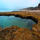 Across the Rockpool by John Sharp