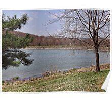 Spring Lake Scene Poster