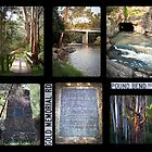 Warrandyte, Victoria by pbclarke