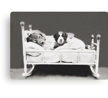 Harry Whittier Frees - The Insomniac Puppy Canvas Print