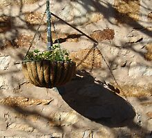 Hanging flowerpot by Dentanarts
