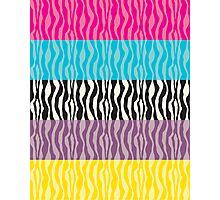 Pastel Zebra Patterns Photographic Print