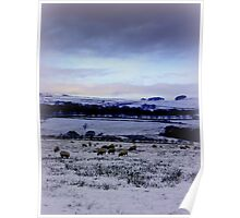 moorland in snow 1 Poster