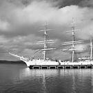 STATSRAAD LEHMKUHL in Lerwick (2013) by NordicBlackbird
