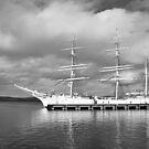 STATSRAAD LEHMKUHL in Lerwick (2013) by NordicBlackbird