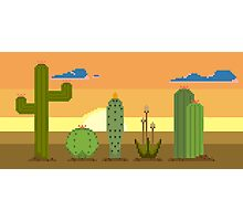 Cacti on the Horizon Photographic Print
