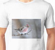 Common Redpoll Unisex T-Shirt