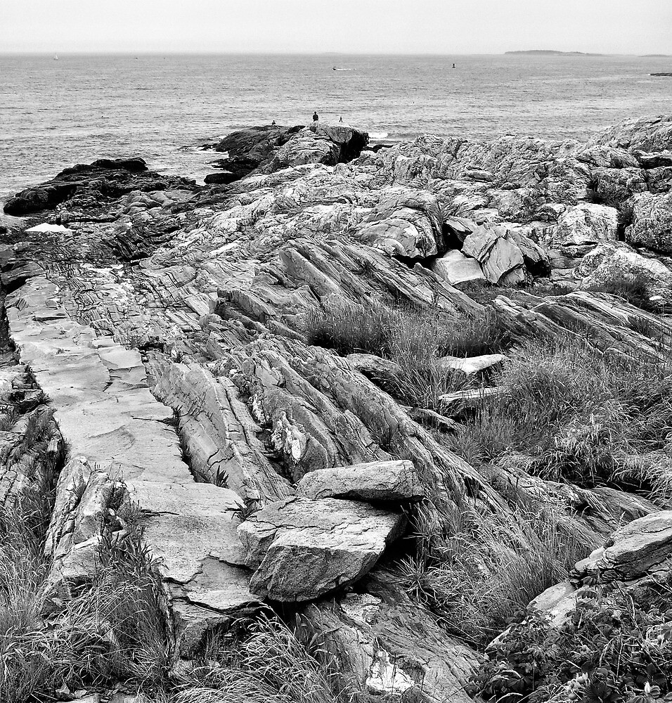 Pemaquit Point, Maine by fauselr