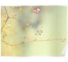 soft scent of spring Poster