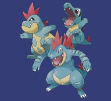 Totodile EVOs by Stephen Dwyer