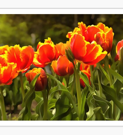 Spring Tulip Blossoms Sticker