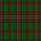 02169 Valdres, Kvan, & Vang #2 District Tartan Fabric Print Iphone Case by Detnecs2013