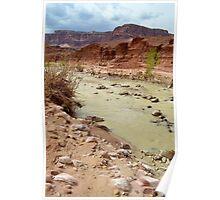 Paria River Poster
