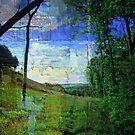 A Walk In Elk County - Textures by teresa731