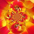 Twisted Tulip by David Schroeder