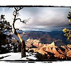 Grand Canyon in Winter by Jonah Gilmore