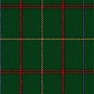 02190 Palace Lawn, (Unidentified #12) Tartan Fabric Print Iphone Case by Detnecs2013