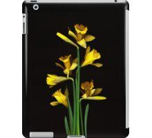 Daffodil / Jonquil ~ Narcissus Bouquet iPad Case/Skin