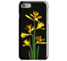 Daffodil / Jonquil ~ Narcissus Bouquet iPhone Case/Skin