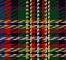 02200 Royal Morning Jacket, (Unidentified #22) Tartan Fabric Print Iphone Case by Detnecs2013