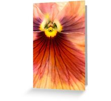 The Generosity of Pansies Greeting Card