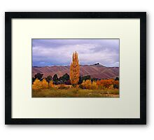 Marlborough, Wither Hills Framed Print