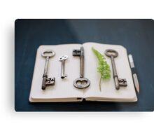 keys Metal Print
