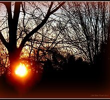 Sparta Sunrise by Deb  Badt-Covell