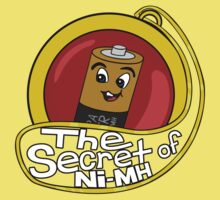The Secret of Ni-MH Kids Clothes