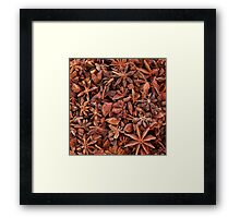 Star Anise Framed Print