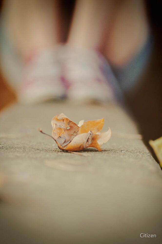 Crumple by Nikki Smith