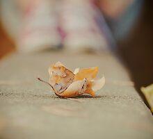 Crumple by Nicola Smith