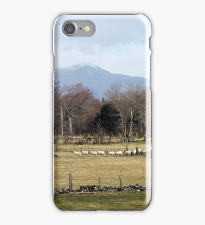Sheep , Following the Leader iPhone Case/Skin