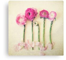 Asparagus and Pink Flowers Canvas Print