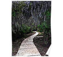 Walkway Thru The Woods Poster