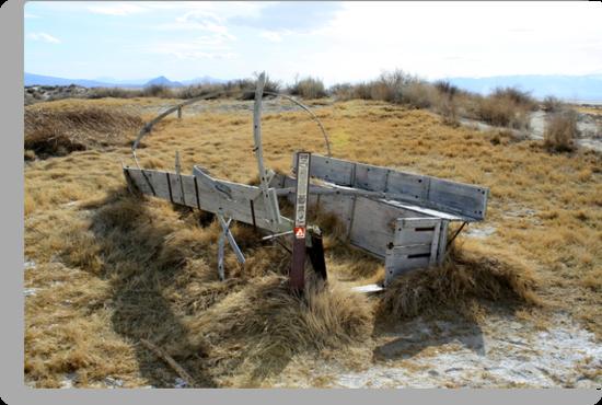 Old Covered Wagon,Black Rock Desert,near Gerlach,Nevada USA by Anthony & Nancy  Leake