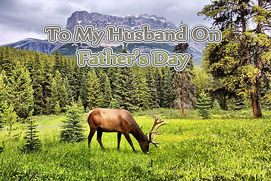Happy Father's Day to My Husband by Vickie Emms