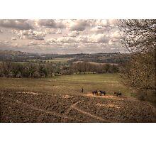 Horses & Landscape Photographic Print