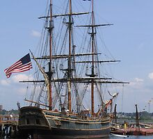 HMS Bounty by reendan